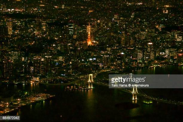 Tokyo city, night time aerial view from airplane