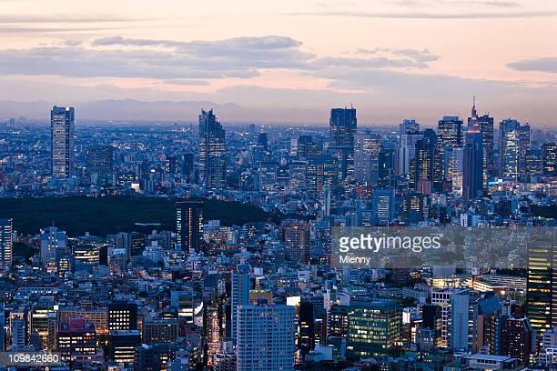 東京の高層ビル街の夜景