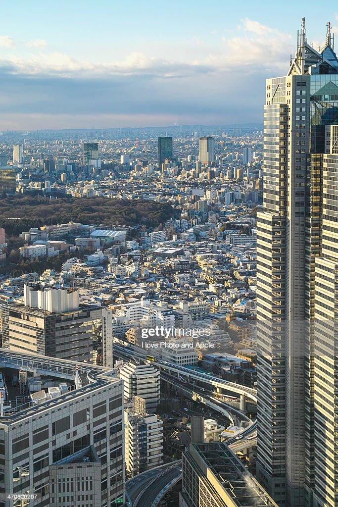 Tokyo city view : Stock Photo