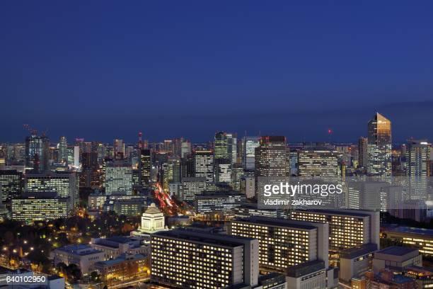 Tokyo citysape at twilight
