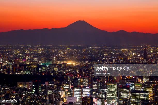 Tokyo cityscape and Mt Fuji