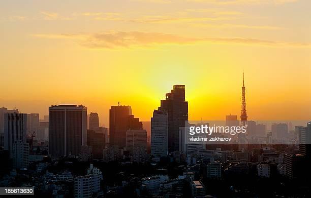 Tokyo cityscape  at sunrise