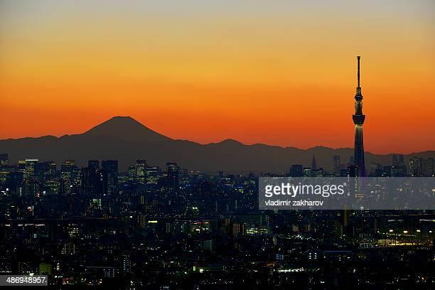 Tokyo Downtown and Mount Fuji at sunset