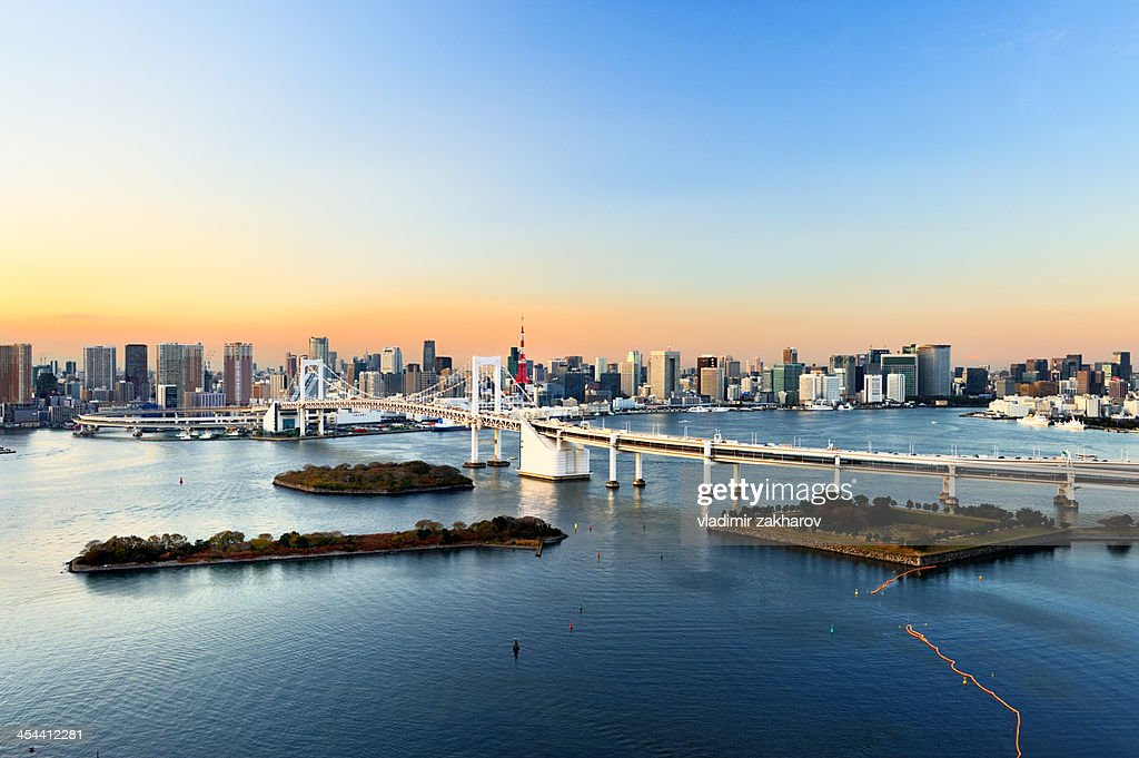 Tokyo Downtown at sunset