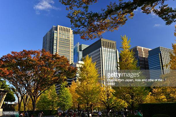 Tokyo in autumn colors