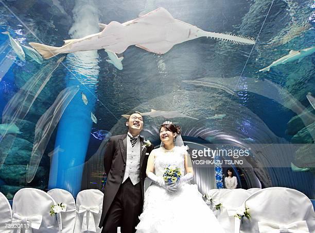 Japanese groom Kosuke Sugiura kisses to his bride Nami during their wedding at a fivemeter depth and 25meter length tubular shaped Aqua Stadium...