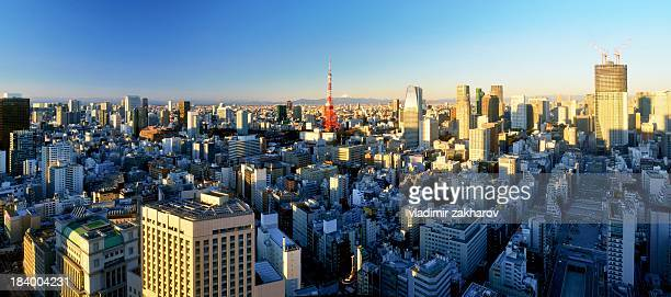 Tokyo oversize panorama at sunrise