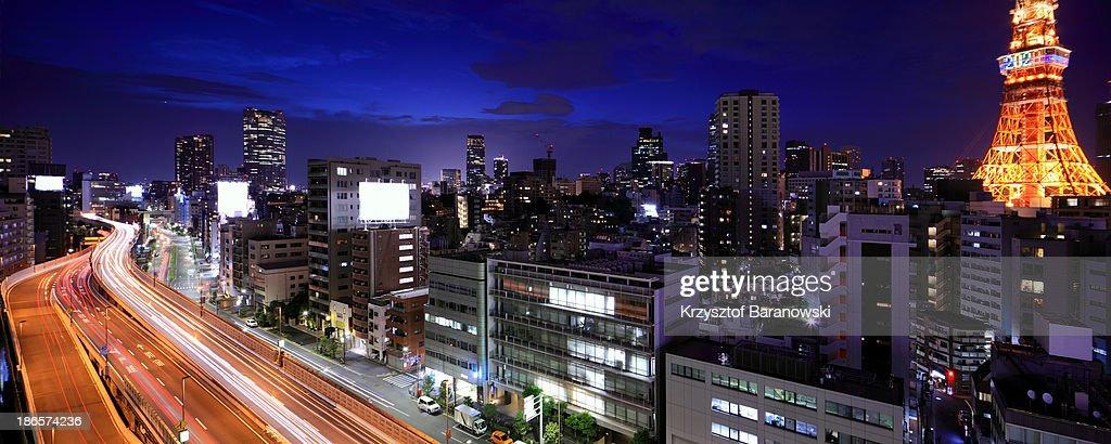 Tokyo Panorama with Tokyo Tower