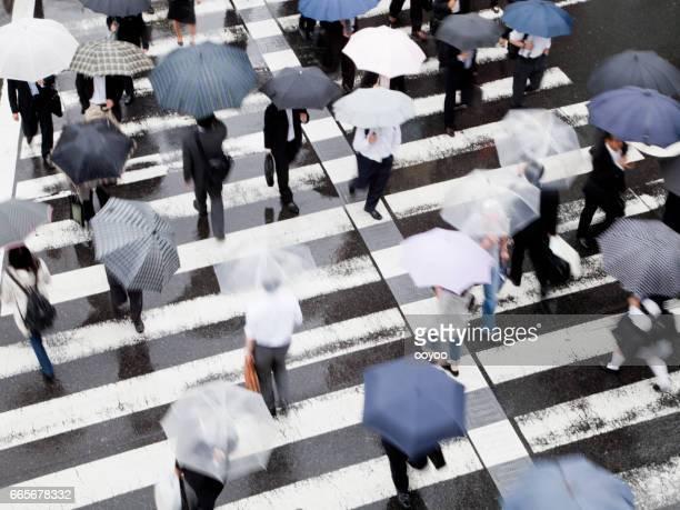 Tokyo Rainy Commuters at Crosswalk