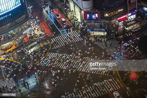 Tokyo Shibuya Crossing in the rain at night