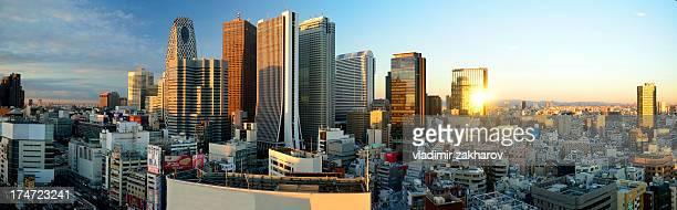 Tokyo Shinjuku Panorama at sunrise