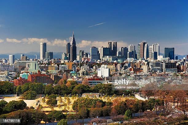 Tokyo Shinjuku view