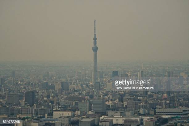 Tokyo Sky Tree aerial view from airplane