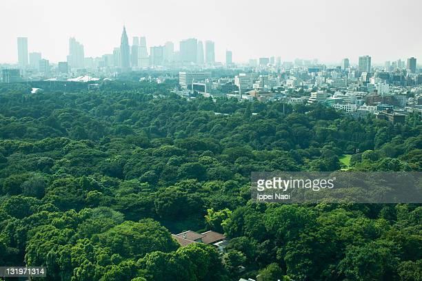 Tokyo skyline from above in summer