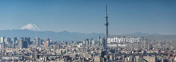 Tokyo skyline panorama with Skytree and Fuji