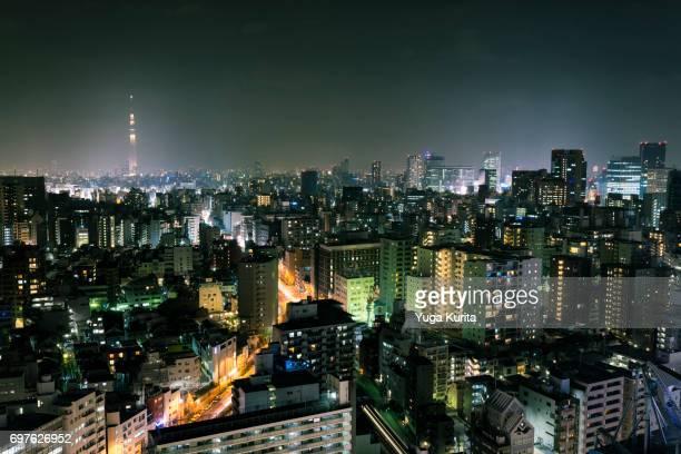 Tokyo Skyline with Tokyo Skytree at Night