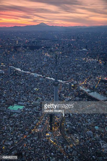 Tokyo Skytree skyline  at sunset aerial view
