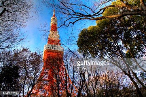 Tokyo Tower : Stock Photo