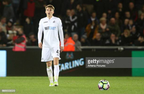 Tom Carroll of Swansea City during the Premier League match between Swansea City and Tottenham Hotspur at The Liberty Stadium on April 5 2017 in...