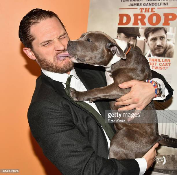 Tom Hardy and Zora the dog attend 'The Drop' New York Premiere at Sunshine Cinema on September 8 2014 in New York City