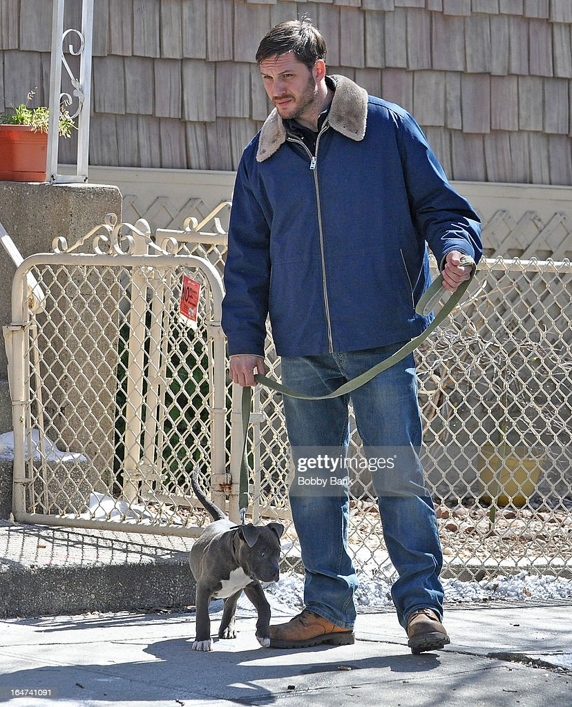 Tom Hardy filming on location for 'Animal Rescue' on March 27, 2013 in the Brooklyn borough of New York City.