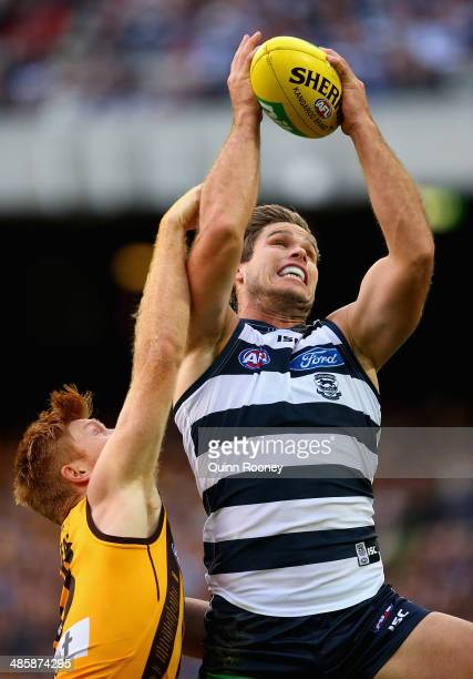 Tom Hawkins of the Cats marks infront of Kyle Cheney of the Hawks during the round five AFL match between the Geelong Cats and the Hawthorn Hawks at...