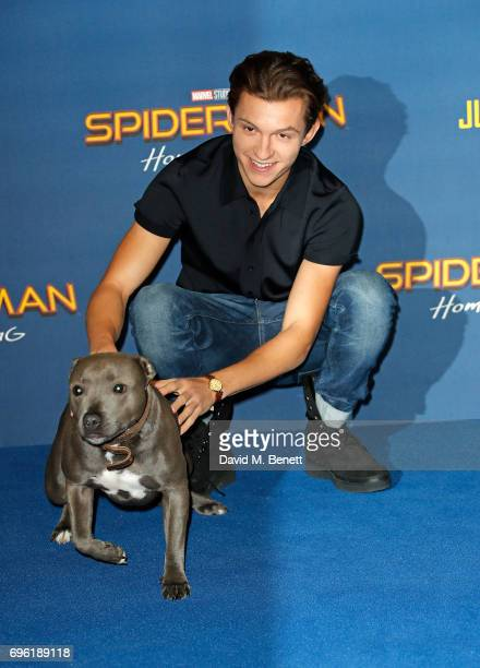 Tom Holland attends the 'SpiderMan Homecoming' photocall at The Ham Yard Hotel on June 15 2017 in London England