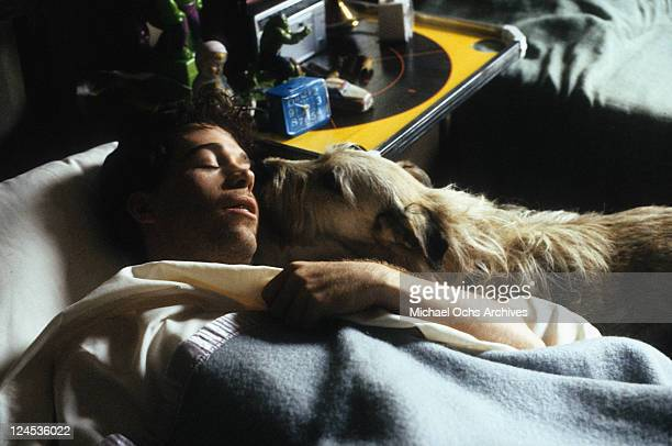 Tom Hulce is licked by dog while sleeping in a scene from the film 'Dominick And Eugene' 1988