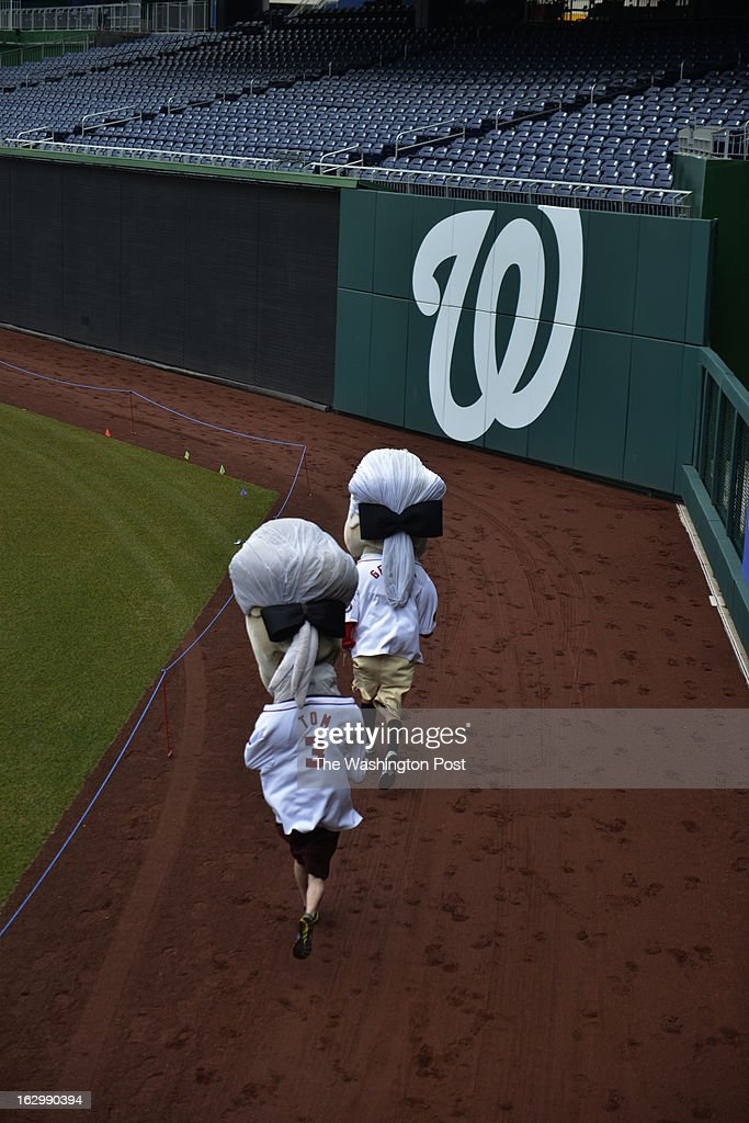 Tom (left) inches closes to George as they compete in a race. Washington Nationals fans audition to become the next Racing President at Nationals Park in Washington, D.C. on March 02, 2013. Candidates are competing for a chance to fill the shoes of Presidents George Washington, Thomas Jefferson, Abraham Lincoln, Theodore Roosevelt and William Howard Taft. Candidates perform freestyle dance, run a 40-yard dash and run two Presidents Races from center field to the home dugout. Developed in 2006, the Racing Presidents are 12 foot oversized mascots who compete in the GEICO Presidents Race during the fourth inning of every Nationals home game.