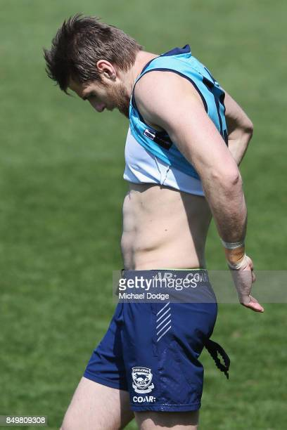 Tom Lonergan of the Cats fully recovered from food poisoning is seen during the Geelong Cats AFL training session at Simonds Stadium on September 20...