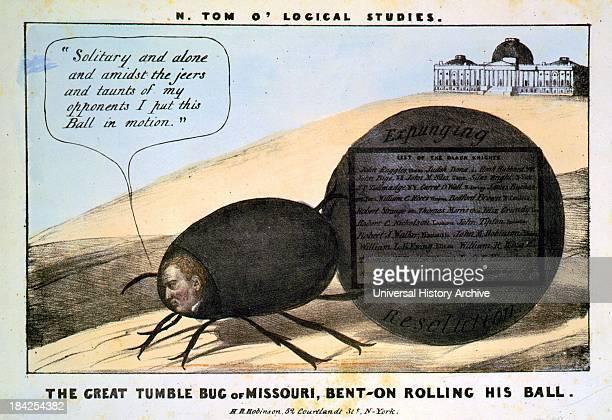 N Tom o' logical studies A political cartoon satirizing former Missouri senator Thomas Hart Benton as 'The great tumble bug of Missouri benton rollin...