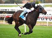 Tom Sadler riding Bengal Cat winning Race 5 the IRT Vobis Gold Reef during Melbourne Racing at Caulfield Racecourse on April 16 2016 in Melbourne...