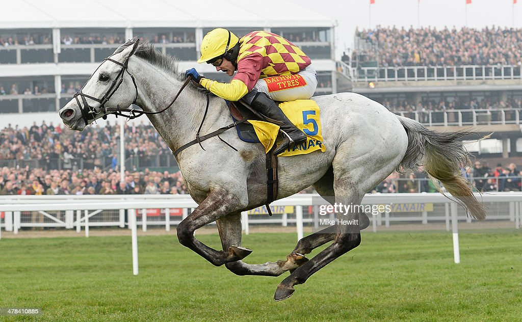 <a gi-track='captionPersonalityLinkClicked' href=/galleries/search?phrase=Tom+Scudamore&family=editorial&specificpeople=833167 ng-click='$event.stopPropagation()'>Tom Scudamore</a> and Dynaste romp away with the Ryanair Steeplechase at Cheltenham Racecourse on March 13, 2014 in Cheltenham, England.