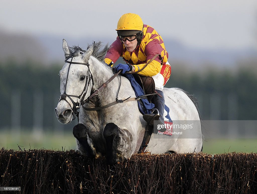 Tom Scudamore riding Dynaste clear the last to win the Fuller's London Pride Novices' Steeple Chase at Newbury racecourse on November 30, 2012 in Newbury, England.