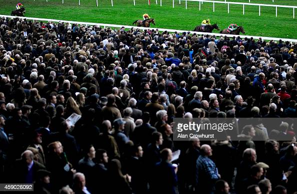 Tom Scudamore riding Katkeau win The Ultima Business Solutions Handicap Hurdle Race at Cheltenham racecourse on November 15 2014 in Cheltenham England