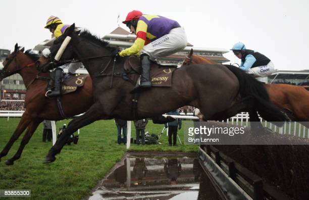 Tom Scudamore riding Madison du Berlais in action during The Hennessy Gold Cup Steeple Chase at Newbury Races on November 29 2008 in Newbury England