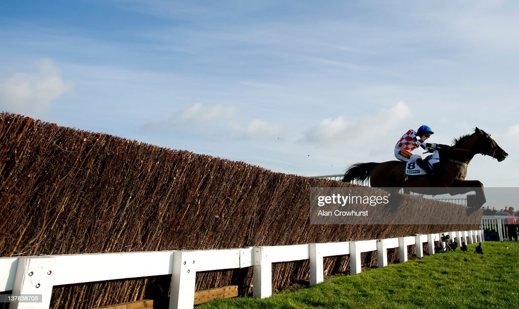 Tom Scudamore riding The Giant Bolster clear the last to win The Murphy Group Steeple Chase at Cheltenham racecourse on January 28 2012 in Cheltenham...