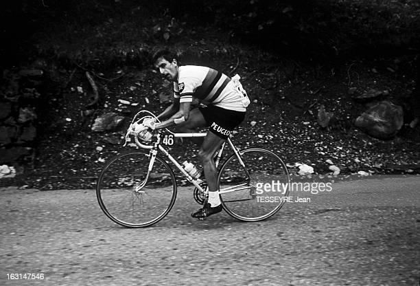 Tom Simpson Brought Down On Mont Ventoux En France le 13 juillet 1967 le coureur cycliste Tom SIMPSON pédalant sur son vélo durant la 13e étape du...