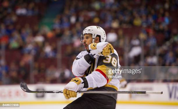 Tomas Hyka of the Las Vegas Golden Knights celebrates after scoring a goal against the Vancouver Canucks in NHL preseason action on September 17 2017...