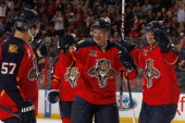 Tomas Kopecky of the Florida Panthers celebrates his goal with teammates against the Nashville Predators at the BBT Center on January 4 2014 in...