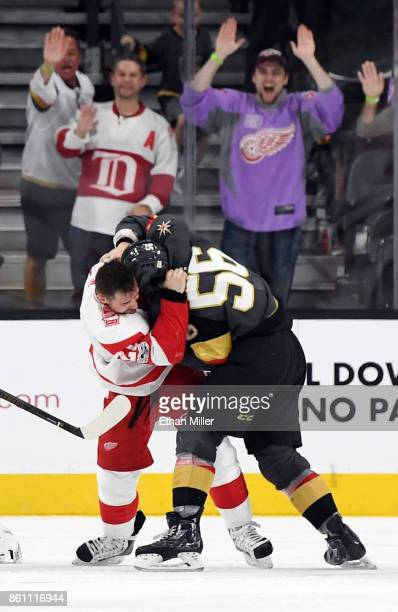 Tomas Tatar of the Detroit Red Wings and Erik Haula of the Vegas Golden Knights fight in the third period of their game at TMobile Arena on October...