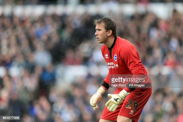 Tomasz Kuszczak Brighton and Hove Albion goalkeeper