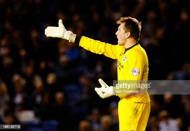 Tomasz Kuszczak of Brighton during the Sky Bet Championship match between Brighton Hove Albion and Watford at The Amex Stadium on October 28 2013 in...