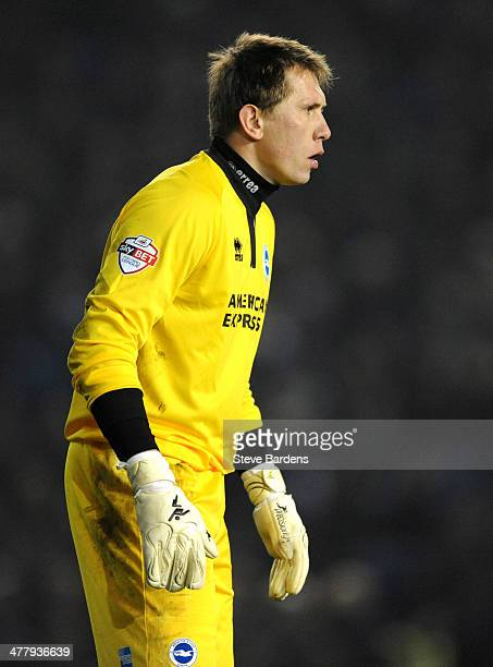 Tomasz Kuszczak of Brighton Hove Albion looks on during the Sky Bet Championship match between Brighton Hove Albion and Queens Park Rangers at Amex...