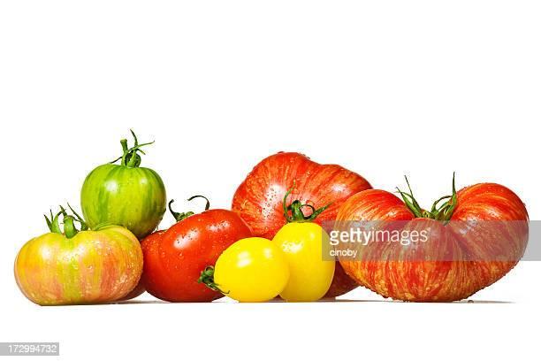 Sélection de tomate
