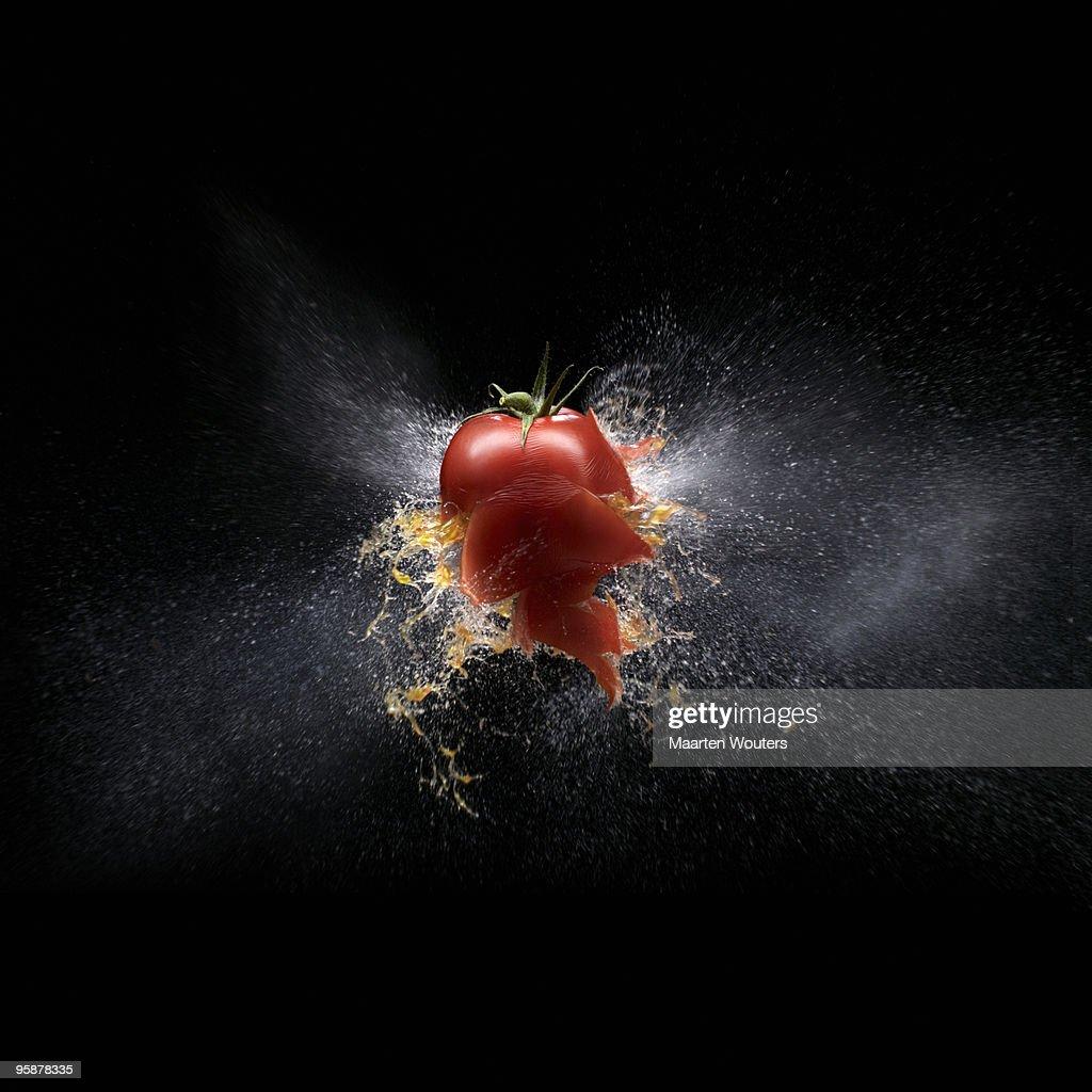 tomato shootout 02 def