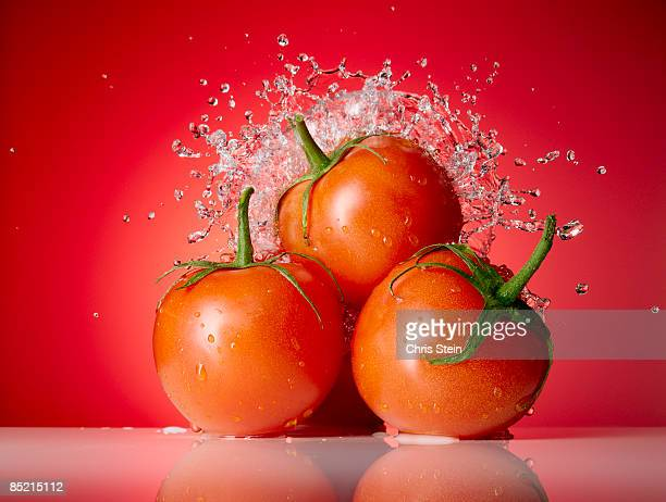 tomato splash stock photos and pictures getty images
