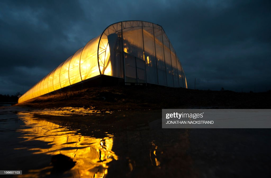 A tomatoe greenhouse is reflected on ice at the Nybyn village, north of Lulea, in Swedish Lapland on November 18, 2012. AFP PHOTO/JONATHAN NACKSTRAND