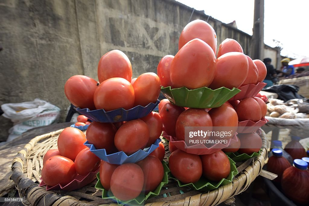 Tomatoes are displayed for sale by a vendor in the Obalende district of Lagos, on May 25, 2015. Tomato prices in Nigeria have been steadily climbing for months, caused by unrest in northern and central states where the crop is grown and this has affected farmers' ability to plant and harvest. The effect of price rises and shortages are adding further hardship to Nigerians already struggling with a lack of fuel for cars and generators, power outages, and spiralling inflation. / AFP / PIUS