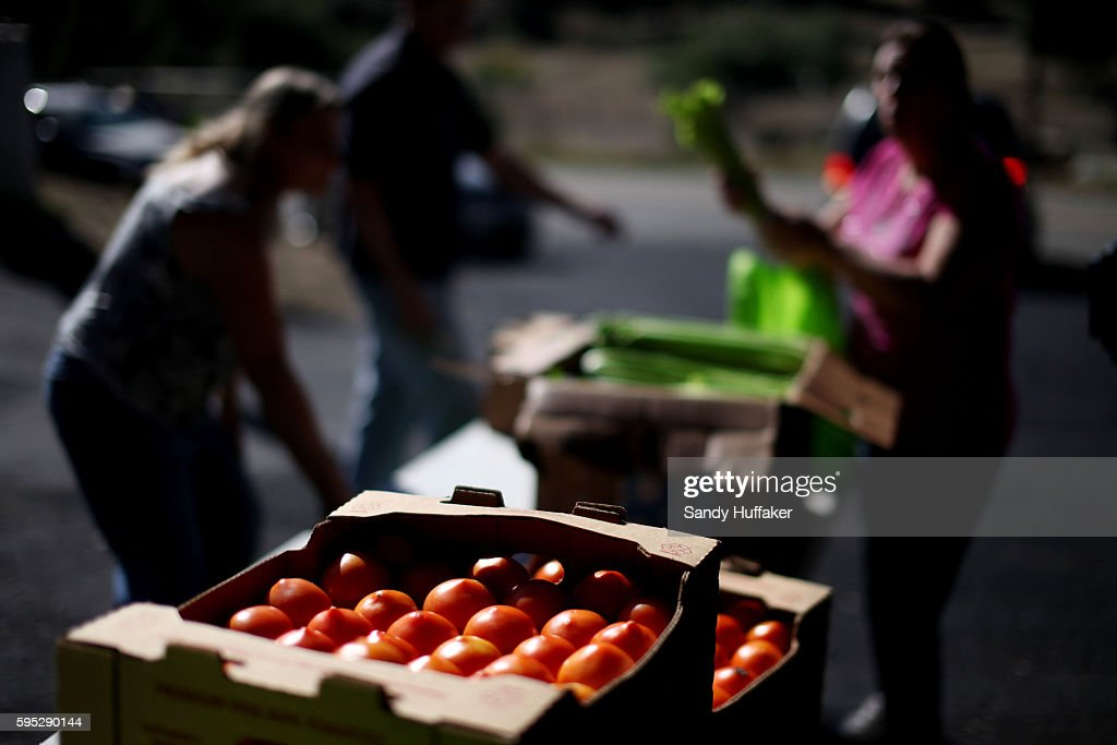 Tomatoes are part of donated food items from a Feeding America truck on Thursday November 3 2011 in Descanso California Feeding America is a charity...
